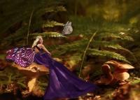 Mushrooms & Butterflies
